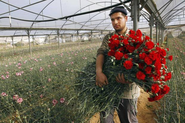 It is not at all unusual in today's Jerusalem to see Jews and Arabs working side by side. Photo: Reuters