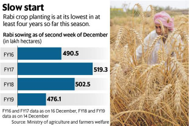 Rabi crop cultivation is at lowest in at least four years so far this season. Graphic: Mint