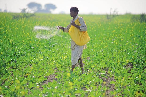 Fertilizer producers find some respite as gas prices decline