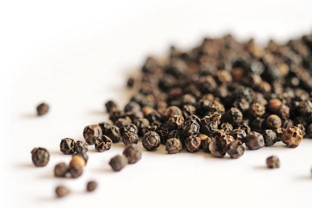 growing spice trade Spices have been traded since at least 3000 bc, when egypt first exchanged them with the land of punt there are many middlemen in the spice trade's supply chain spices grown in rural india or.